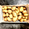 aardappelen aan huis geleverd