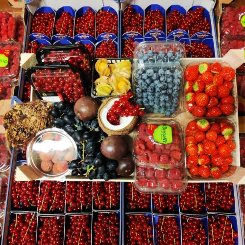 rood fruit kopen