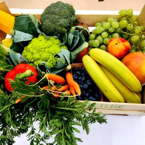groenten en fruit mand