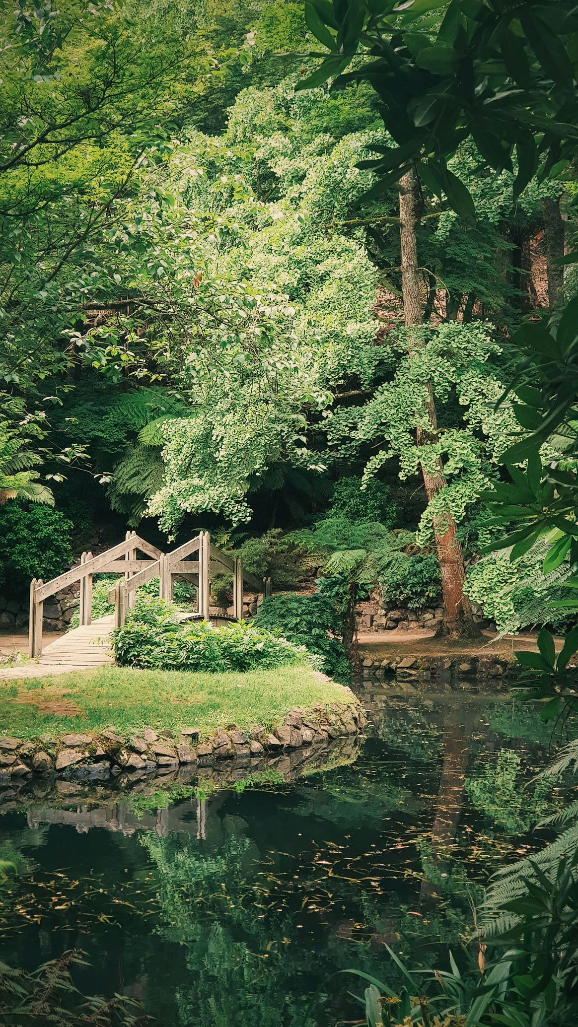 landscaper-gallery-10