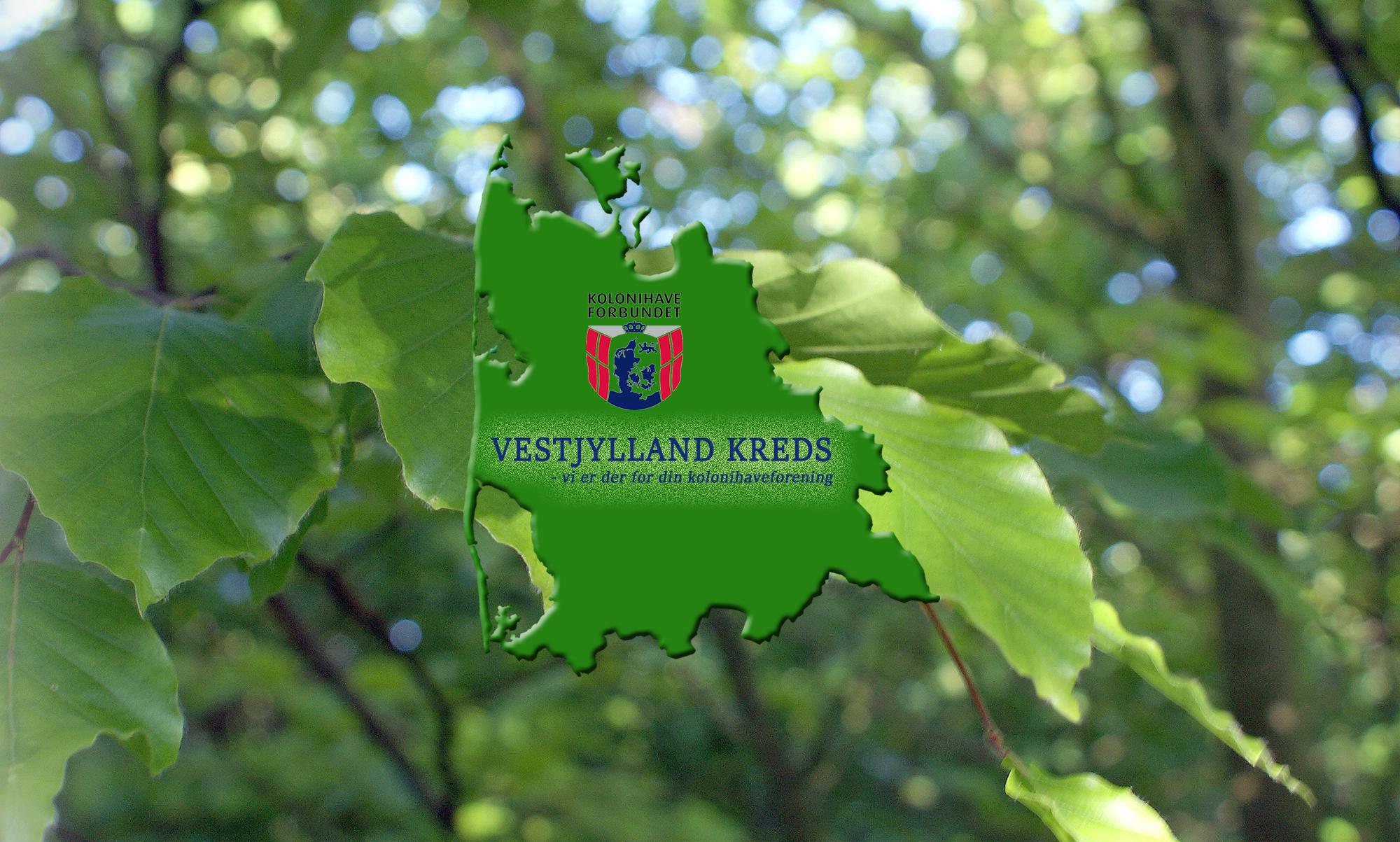 Vestjylland Kreds