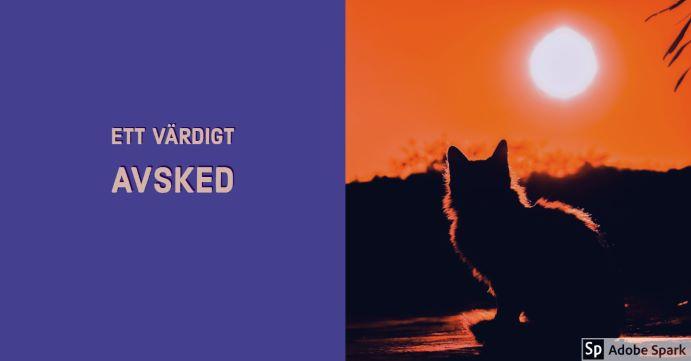 Ett värdigt avsked står det mot en lila bakgrund till vänster. Till höger en kvällsol med siluetten av en katt. Symbolisering av känslan av avsked inför avlivning av katt.