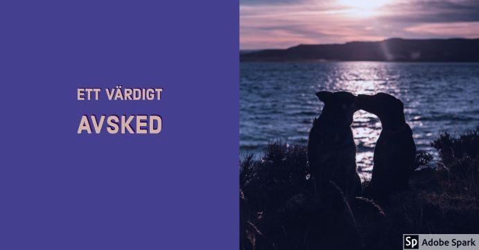 Ett värdigt avsked står det mot en blålila bakgrund. Till höger i bild är två hundar nos mot nos i solnedgången med utsikt över ett hav. Bilden ska symbolisera ett värdigt slut i samband med avlivning av hund.
