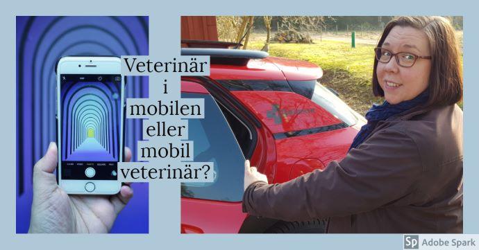 Veterinär i mobilen eller mobil veterinär? står det över två bilder. Till vänster en hand som håller en mobiltelefon, till höger en bild på veterinär Agneta Andersson vid Vetmobilen.