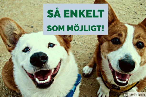 """Två leende hundar tittar upp i kameran. Det är två corigie-hundar och texten """"Så enkelt som möjligt!"""" står ovanför dem. Vetmobilens påminnelsetjänst underlättar för dig när det är dags att vaccinera din hund."""