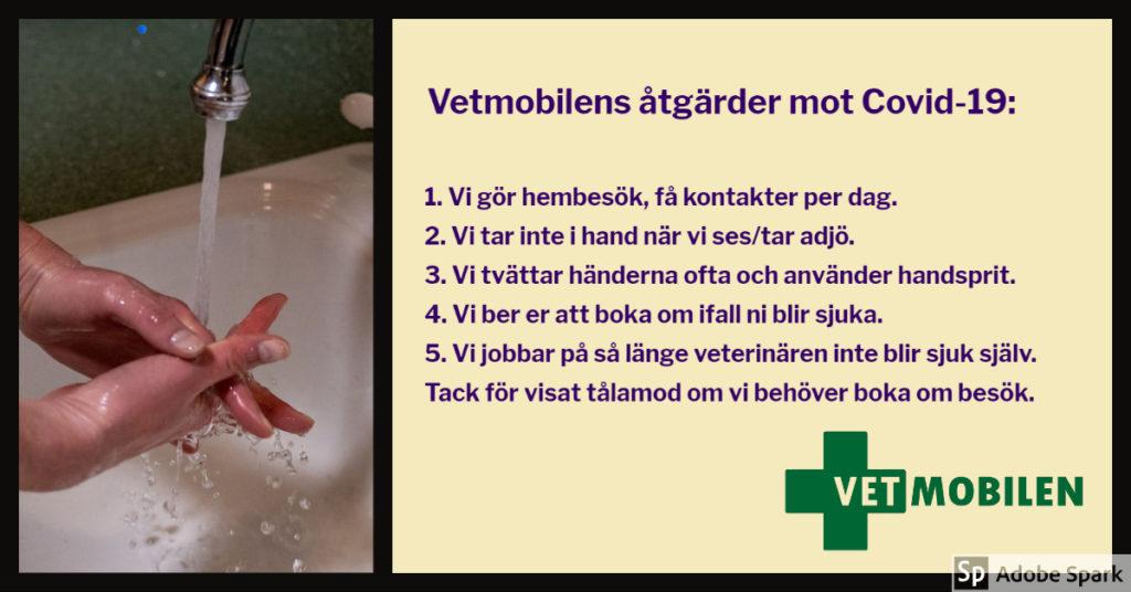 Bild på händer som blir tvättade under rinnande vatten. Texten Vetmobilens åtgärder mot Covid-19 beskriver de åtgärder Vetmobilen tar för att minska risken för coronavirus att spridas.