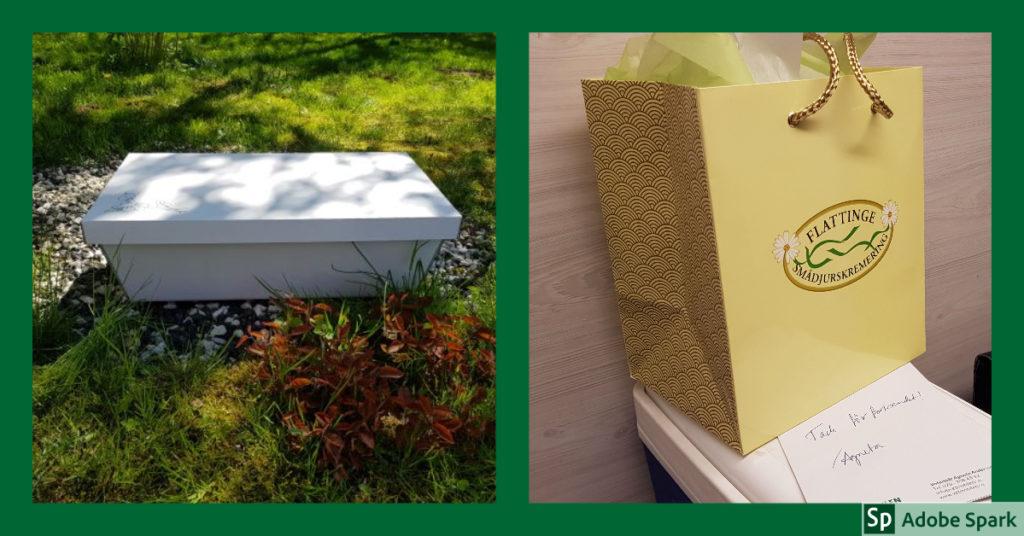 En kista och en papperskasse innehållande askan efter ett kremerat djur. De är några alternativ vid avlivning hemma.