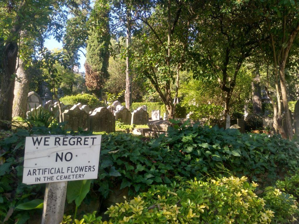 No_flores_plastico_cementerio