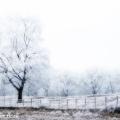 Winterse groeve Oostermeent