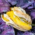 Verlepte tulpen