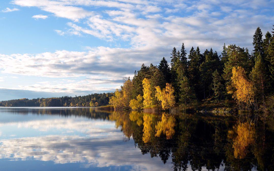 Venir vivre en Suède