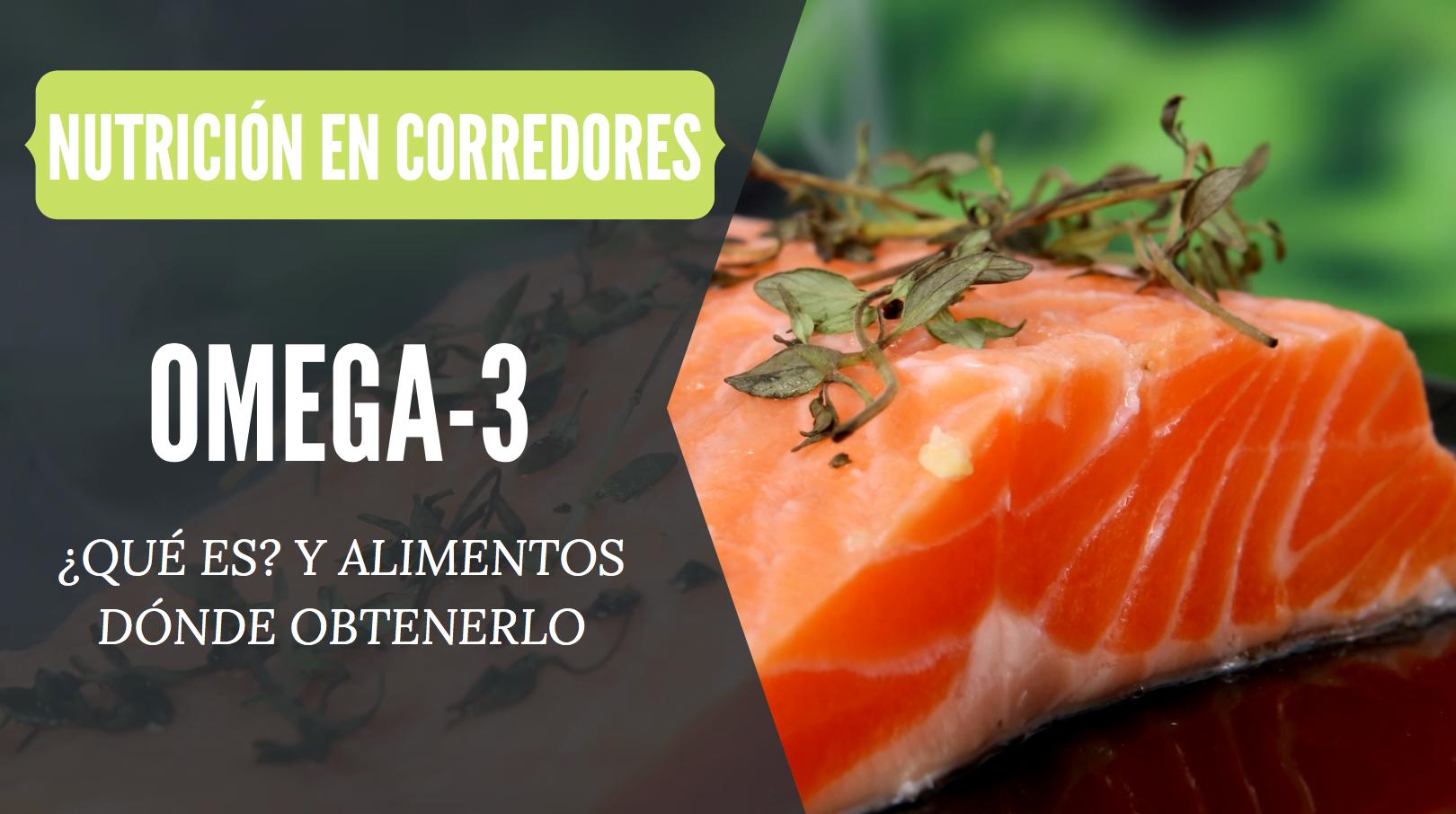 omega 3 que es alimentos