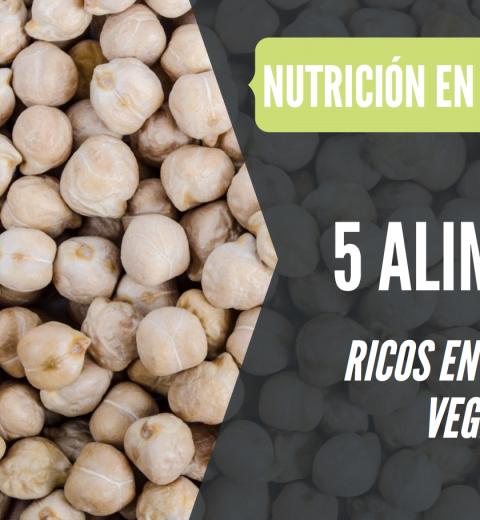 alimentos ricos en proteina vegetal