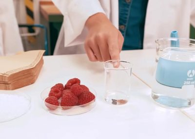 DNA i hindbær