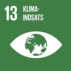 FN's verdensmål 13