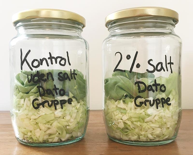 Forrådnelse og fermentering - opstilling