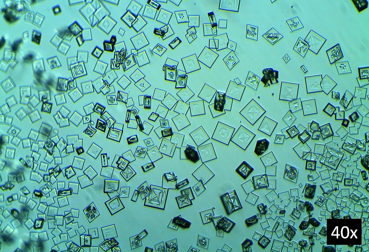 Mikrokrystaller af cæsiumperchlorat opnået ved mikrokrystallografi