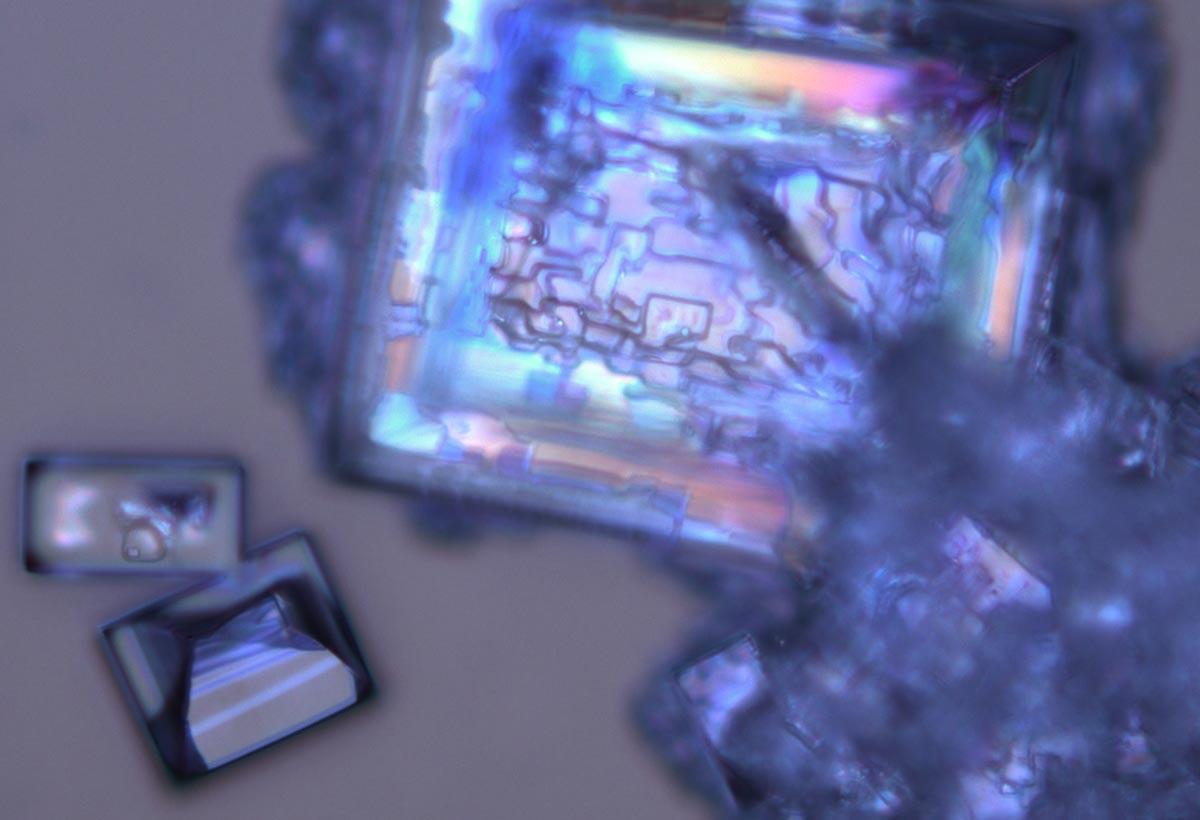 Polariseringsmikroskopi af natriumchlorid