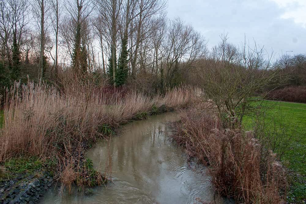 River in flood - just to show the levels of rain we have had in the UK.