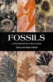 Fossils A Photographic Field Guide - Review