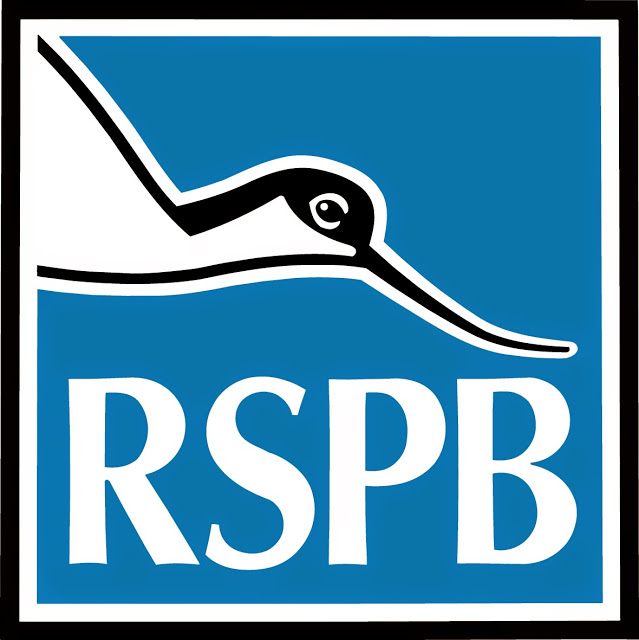 RSPB Logo - The RSPB Big Wild Sleepout is Coming
