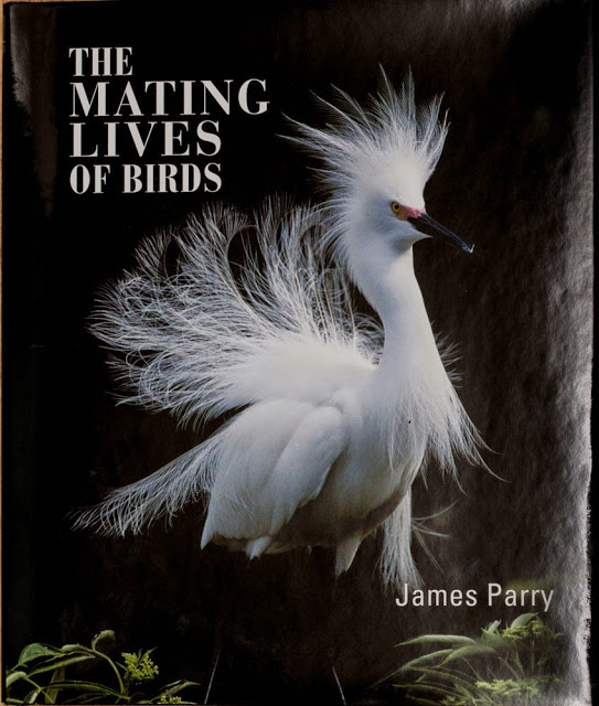 The Mating Lives of Birds by James Parry - Review