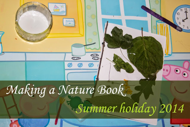 Creating a Nature Notebook