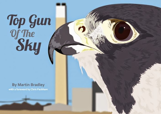 Top Gun of the Sky by Martin Bradley - Review