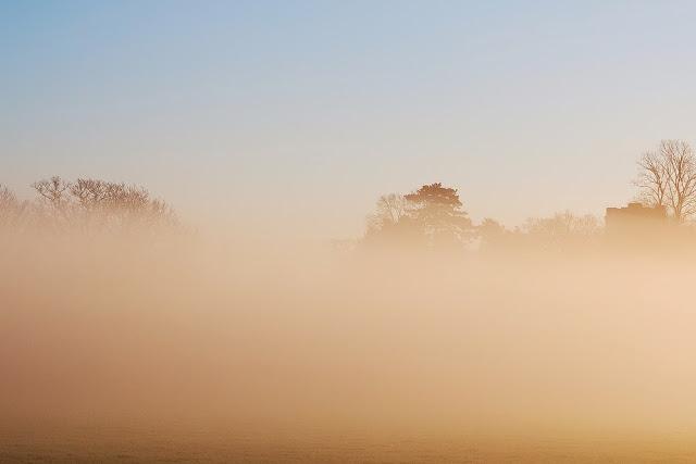 Misty Morning on the Patch
