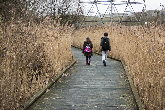 Visit a Nature Reserve, like Rainham Marshes one of my 5 Things to #GetOutside with the kids this half term