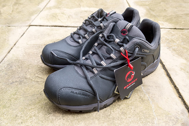 Leather shoes like the Mammut Summit GTX