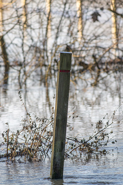 Post in the Floods