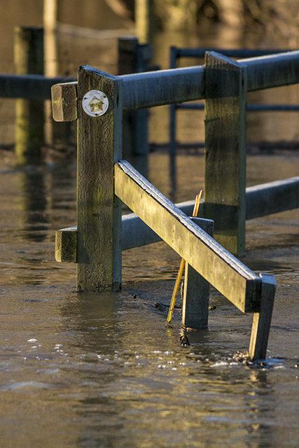 Bridge Handrail under water.