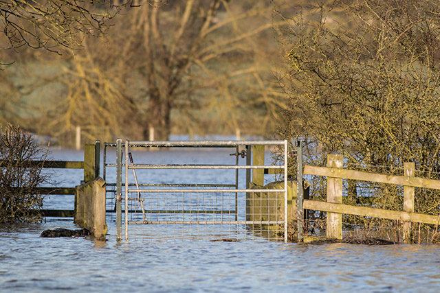 Semi Submerged Gate