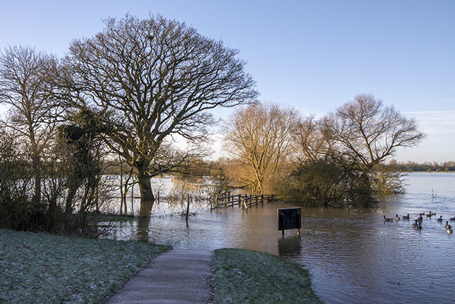 Flooded Paths & Fields