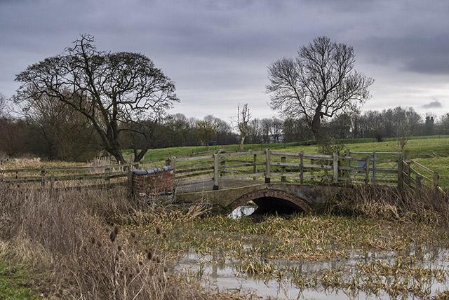 Unprepared - Old stone bridge over back brook at Floodplain Forest Nature Reserve