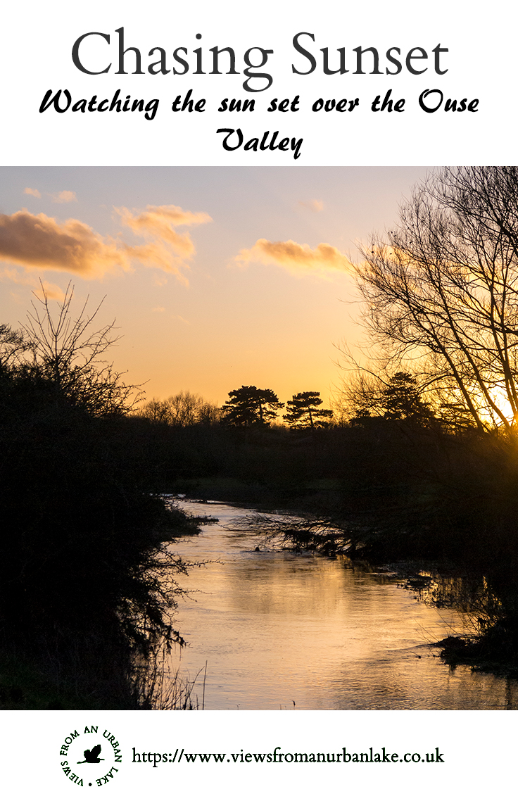 Chasing Sunset - an evening walk around the floodplain forest NR and Ouse Valley with lots of sunset photos