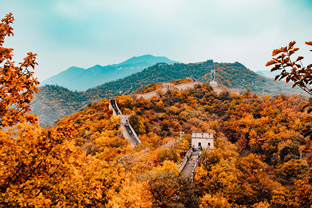 How Ecotherapy Led Me to the Great Wall of China