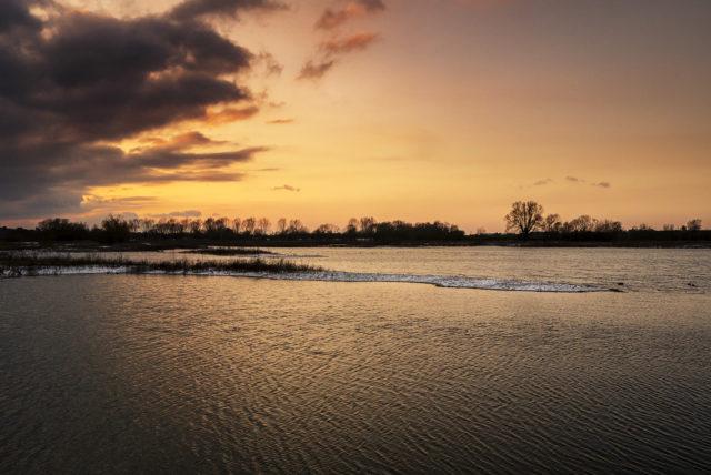 Walking for Calm Feb Update - Sunset over the Floodplain Forest NR