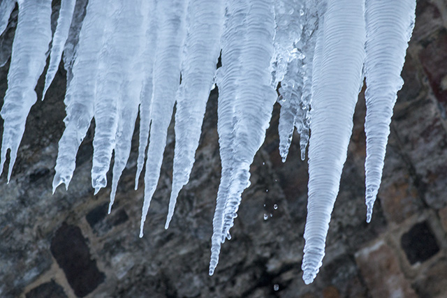 Mini Beast from the East's Claws! Icicles from the Viaduct