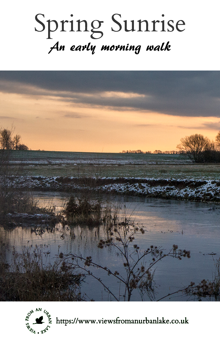 Spring Sunrise - An early morning walk in the Ouse Valley, in search of sunrise photos.