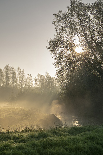 River Ouse in mist
