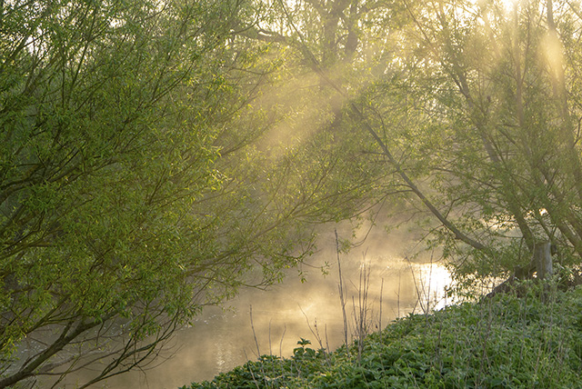 Morning on the River Ouse