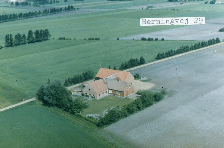 Herningvej29