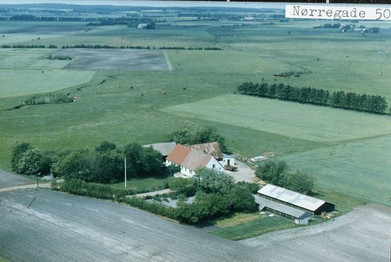 Nørregade50