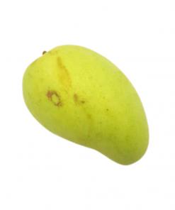 Mango giant