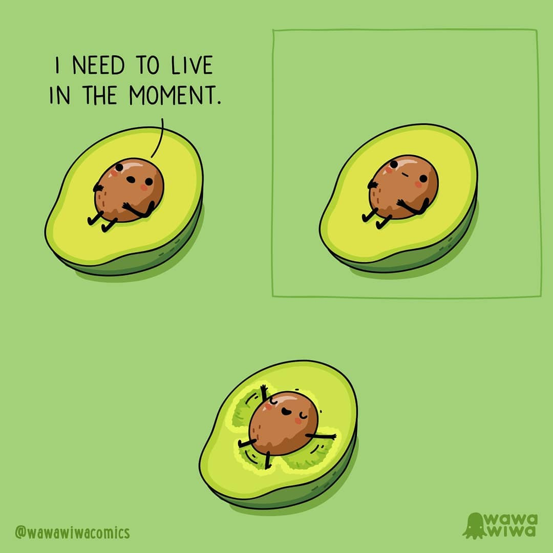 comic about an avocado saying I need to live in the moment