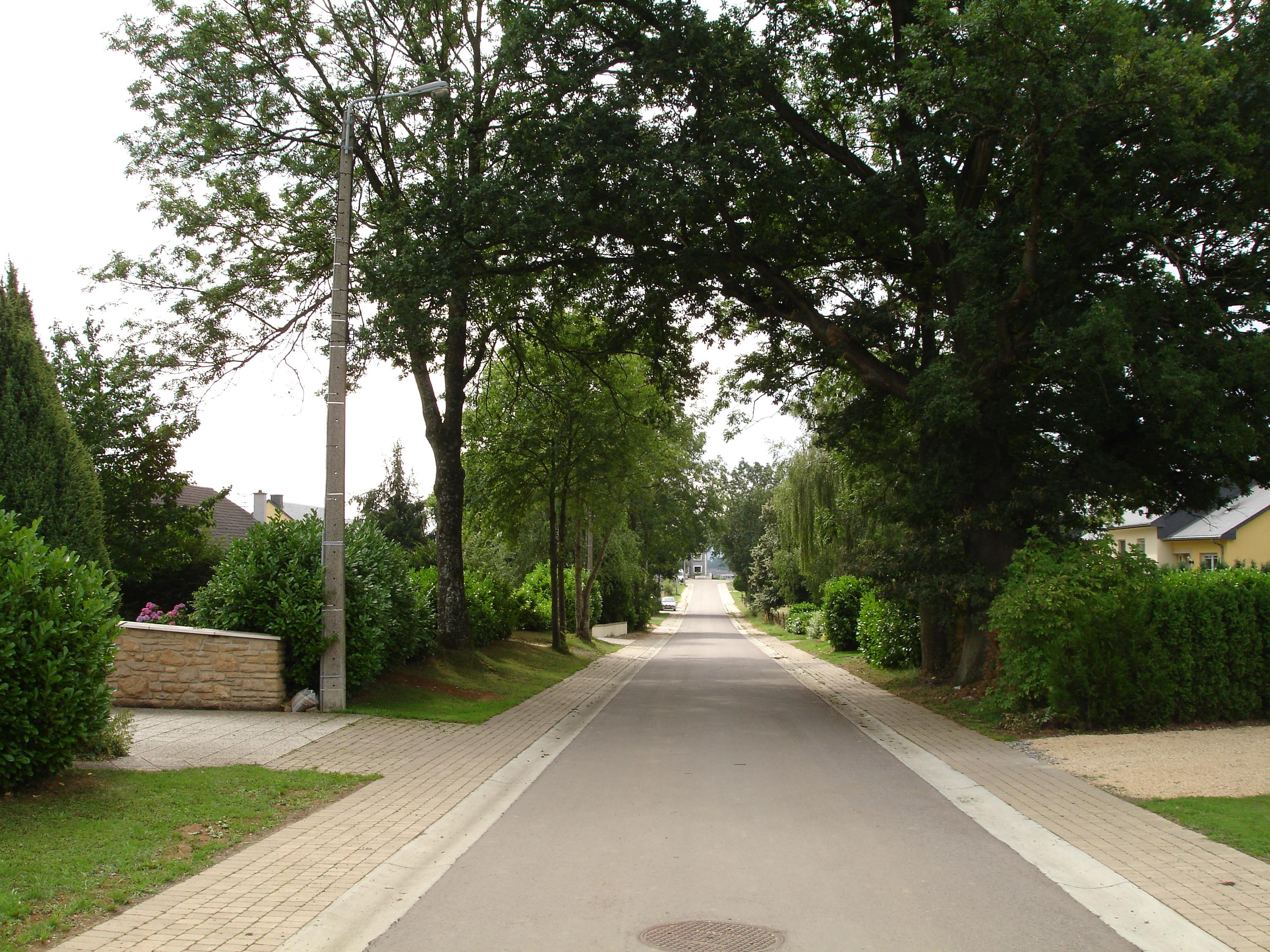 Rue du Chêne