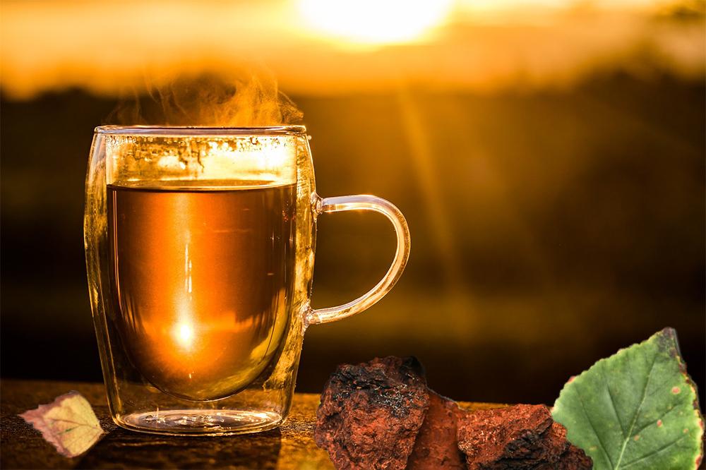 chaga pilz birkenblatt tee