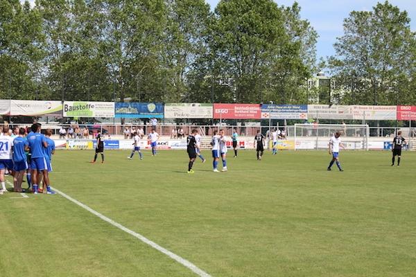 30. Spieltag 2018/ 2019 - Luckenwalde gegen Hohenstein Ernstthal - 4